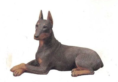 Doberman Pinscher Red II