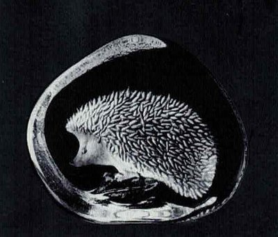 Hedgehog - Mats Jonasson