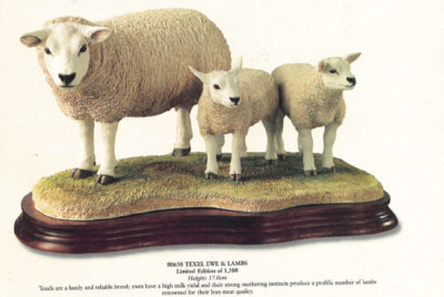 Texel Ewe & Lambs - Limited Edition 660 / 1500