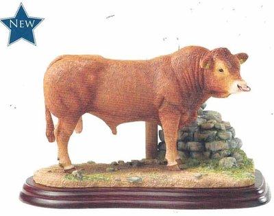 Limousin Bull