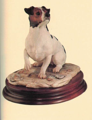 Jack Russel Terrier (Bitch)