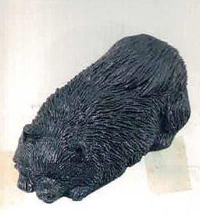 Pomerian Black