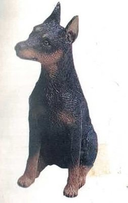 Miniature Pinscher Black