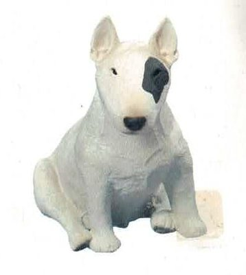 Bullterrier white Spot