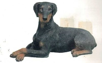 Doberman Pinscher Black UC ll