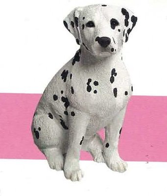Dalmation Black (Sitting)
