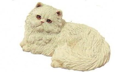 Persian cat white (laying)