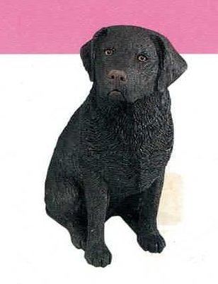 Labrador Retriever Choc (Sitting)