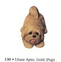 Lhasa Apso, Golden (pup)