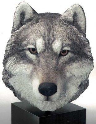 Wolf, Gray - Head w/base