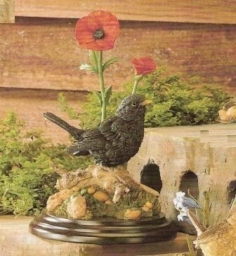 Blackbird with Poppies