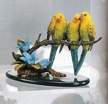 Tropical Paradise Budgerigars