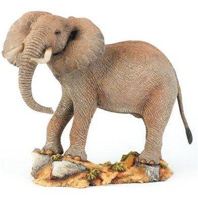 Bull Elephant Kingdom