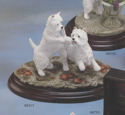 West Highland Terrier Pair