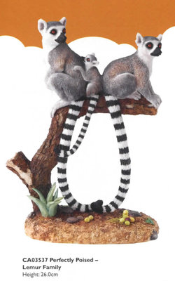Perfectly Poised - Lemur Family