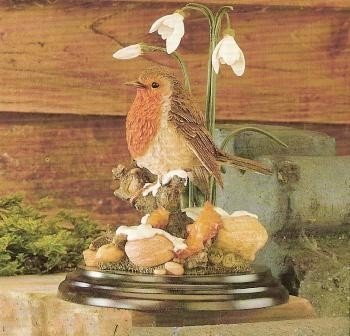 Robin with Snowdrops