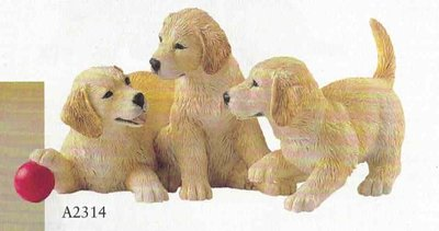 Three golden retrever pups