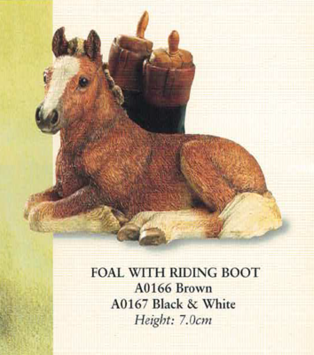 Foall with riding boot