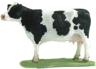 Friesian Cow (Black&White)