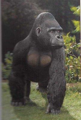 Gorilla Supremacy