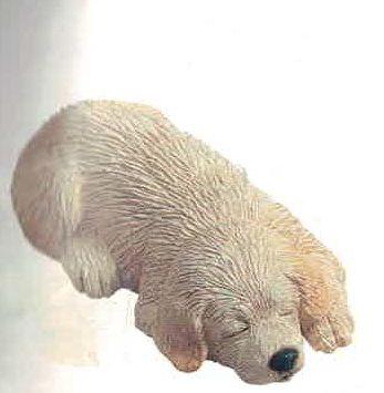 Labrador Retriever Yel