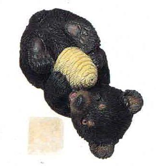 Bear Black Cub with honey