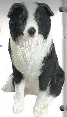 Border Terrier black / white