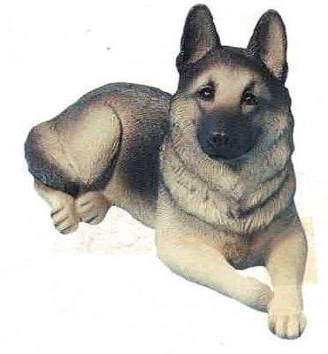 German Shepherd Dog II