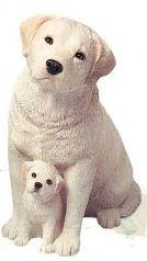 Labrador Retriever, Yel (&Pups)