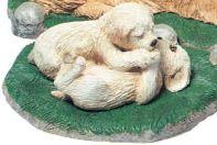 Golden retriever pups (Trio`s)
