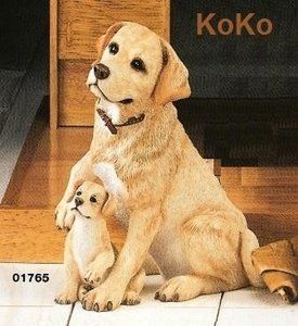 Labrador blond & puppy