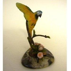 Tropical Blue Macaw