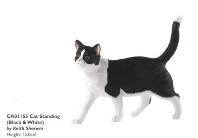 Cat standing - Black&White