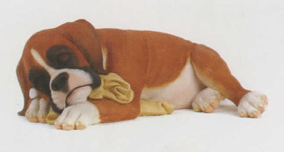 Boxer Pup Sleeping