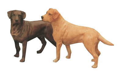 Labrador Standing (Chocolate)