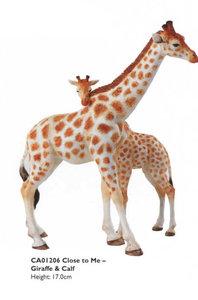 Close to Me - Giraffe & Calf