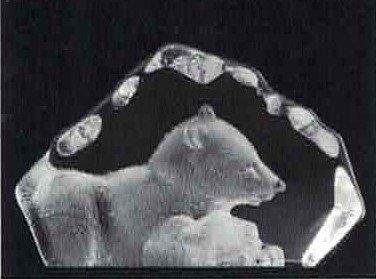 Polar Bear (2) - Mats Jonasson