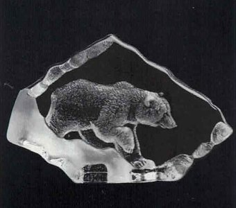 Grizzly bear - Mats Jonasson
