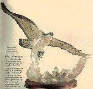 The Osprey - LE