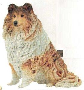 Shetland Sheepdog