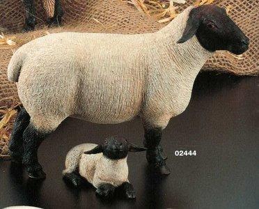 Suffolk Ewe & Lamb