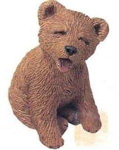 Bear Brown Cub Yawning