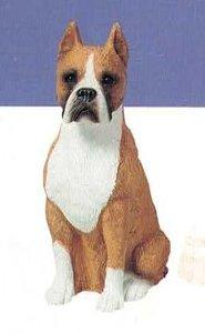 Boxer Fawn