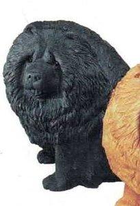 Chow chow black