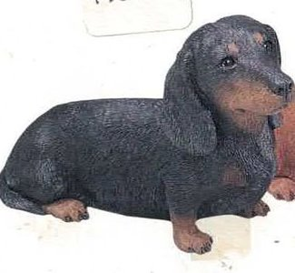 Dachshund Smooth Black
