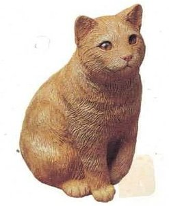 Cat Red Tabby