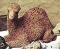 Babes of Bethlehem - Camel