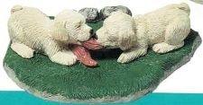 Labrador Retriever (Yel) pups (Trio`s)