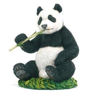 Panda met bamboe
