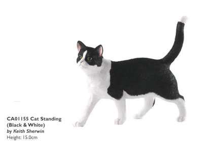 Cat standing - Black&White